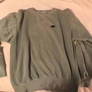 Green Bear Brandy Melville Sweatshirt